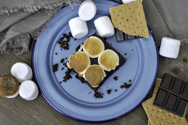 Campfire Snack Cake_overhead plate.jpg