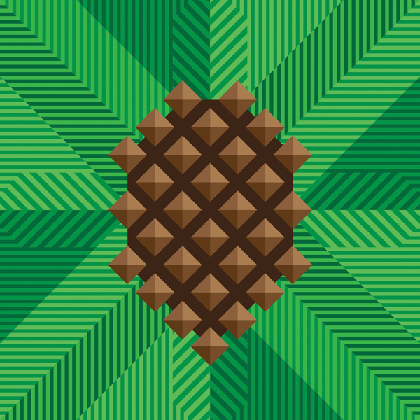 Pinecone_illustration.png
