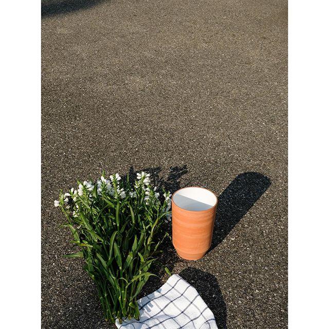 terracotta vase  #paula #handmade #ceramics #homeware #clay #terracotta #vase #craft #madeinswitzerland