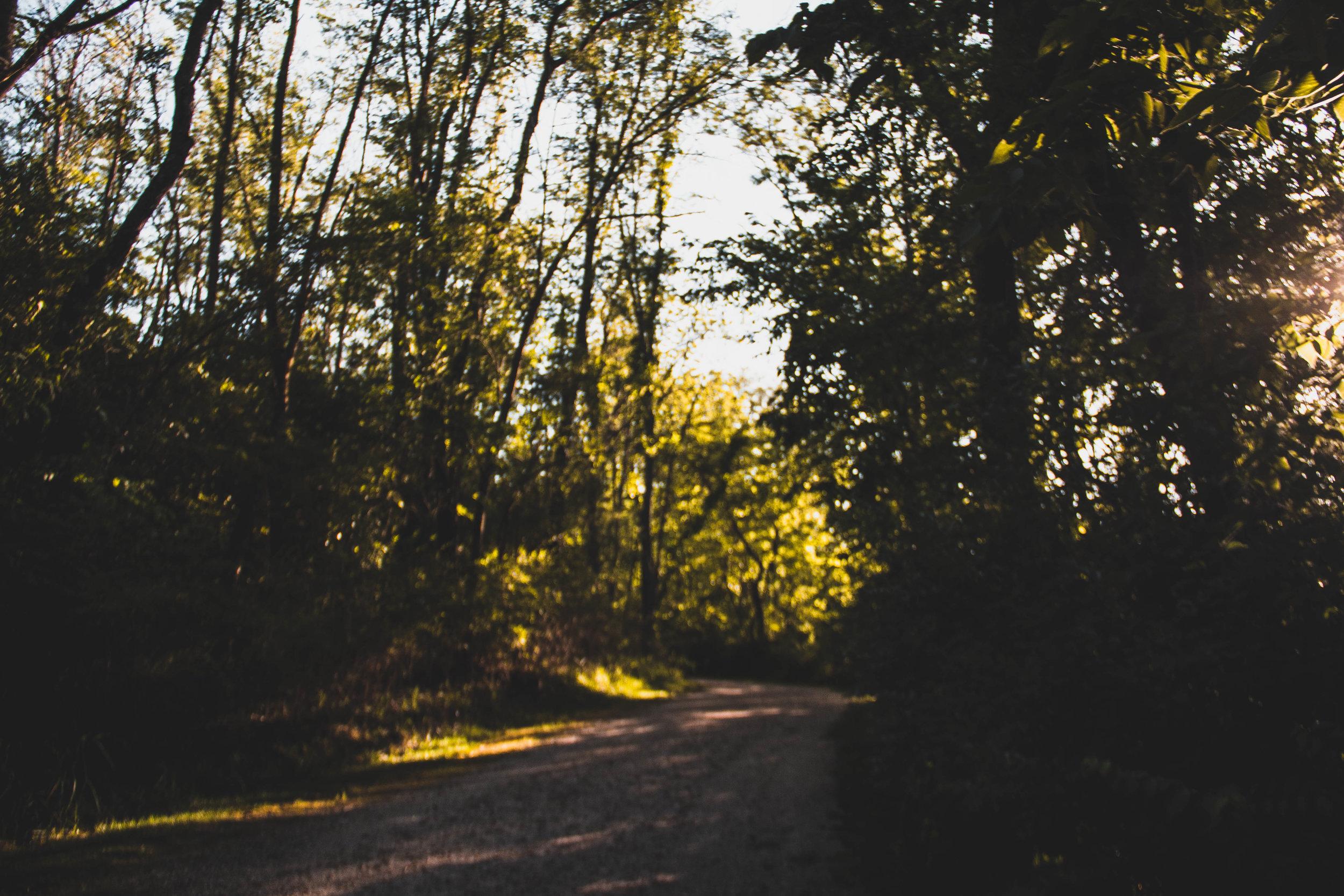 PO_Landscape_-12.jpg