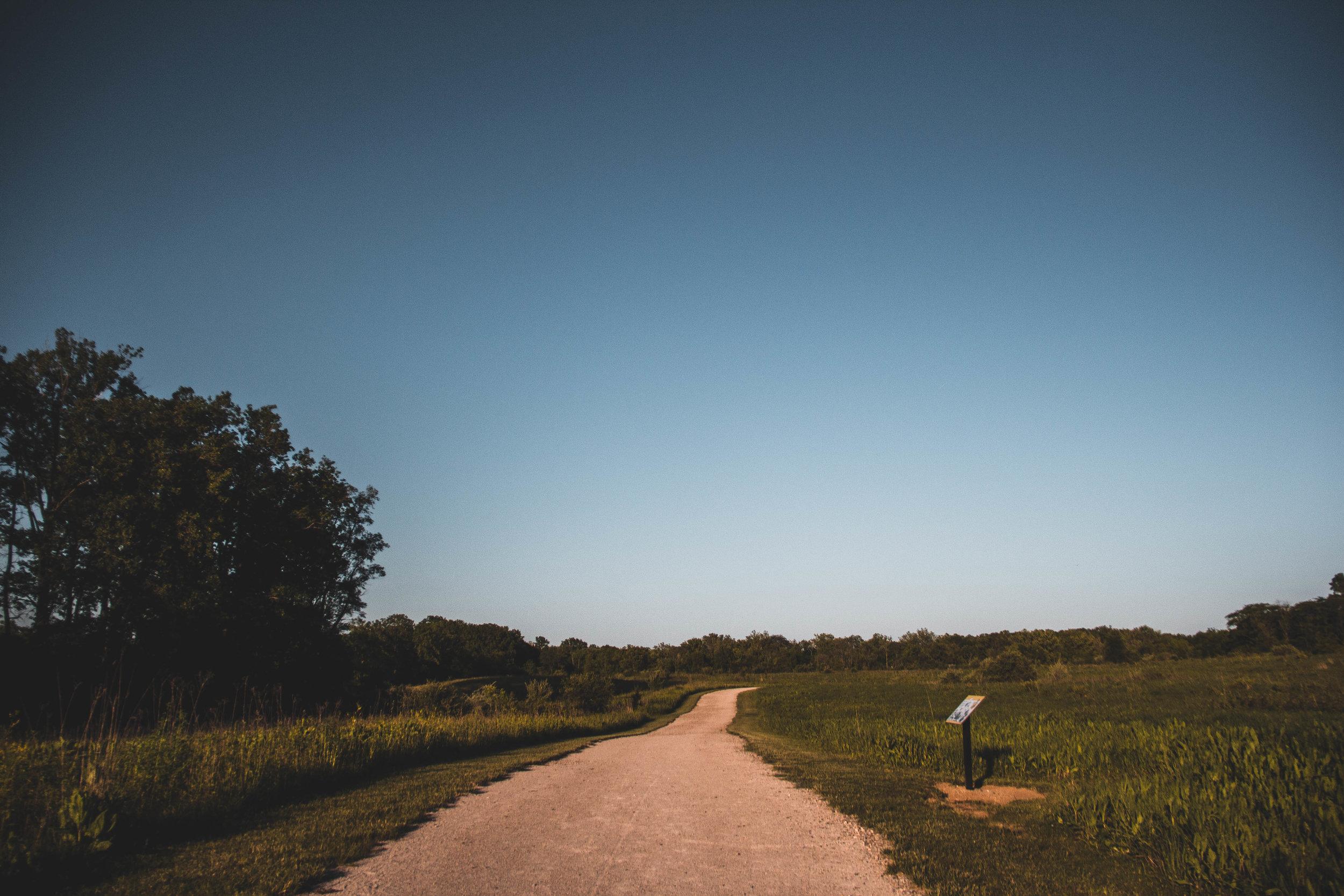 PO_Landscape_-24.jpg
