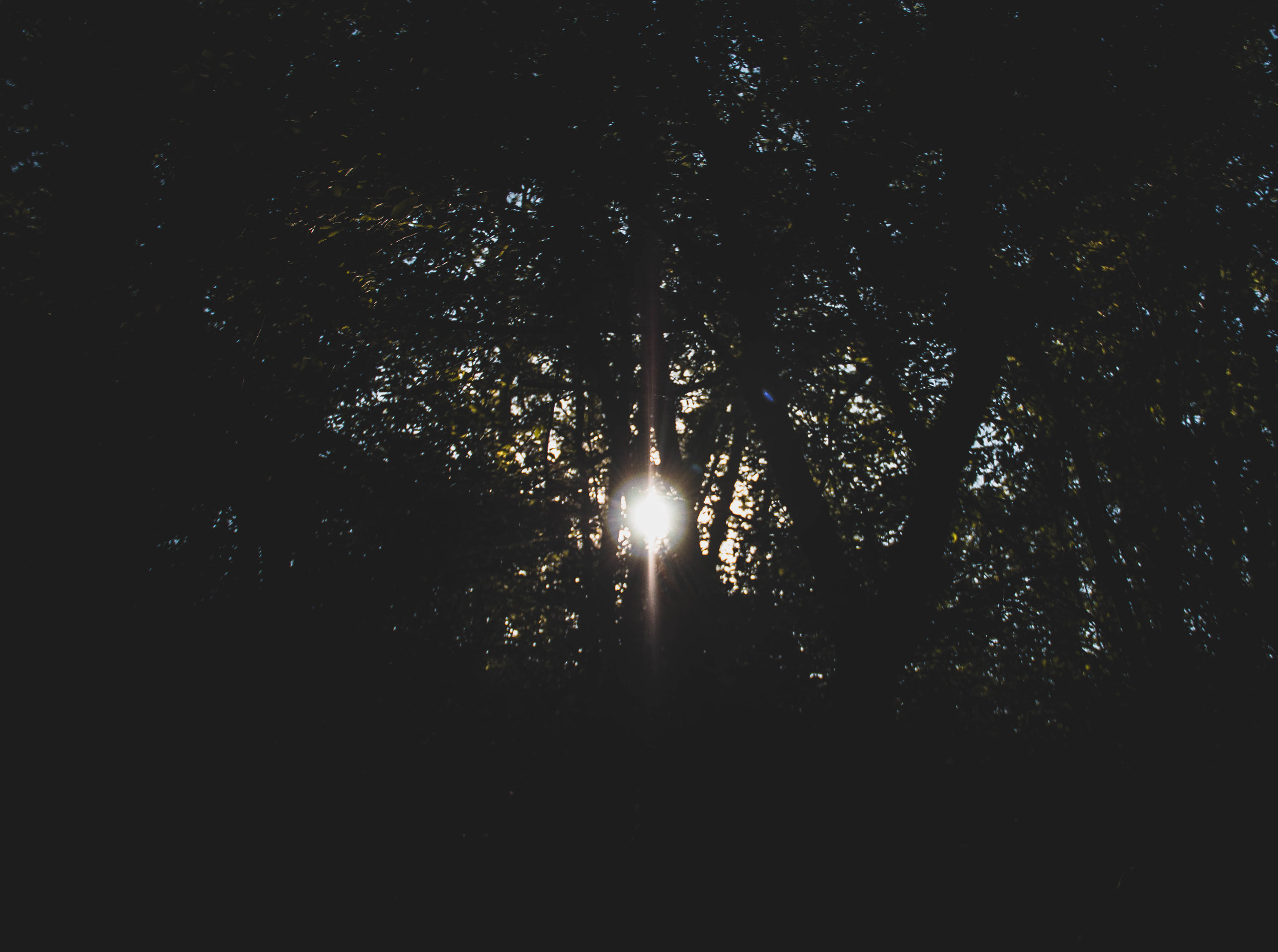 PO_Landscape_-13.jpg