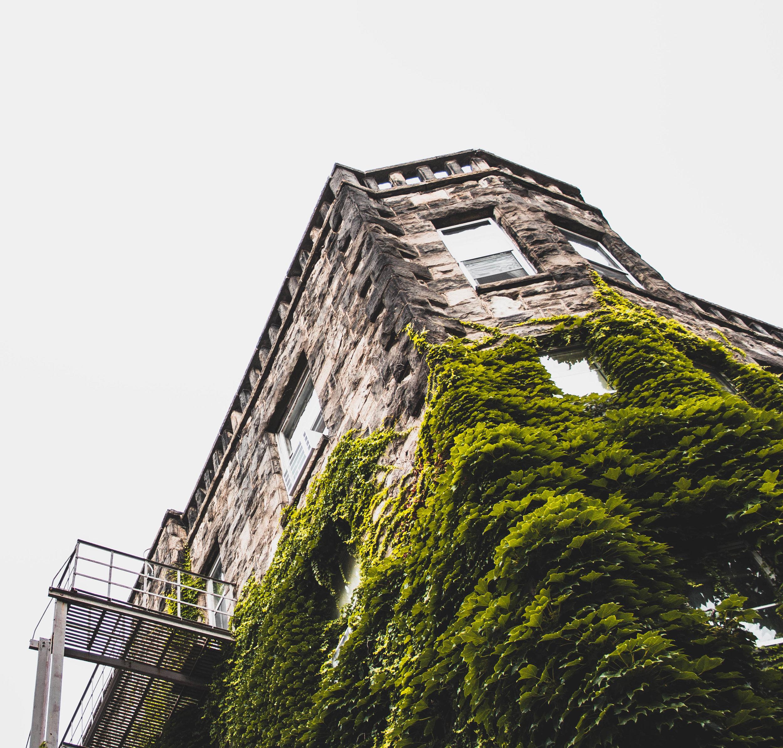 Building_-2.jpg