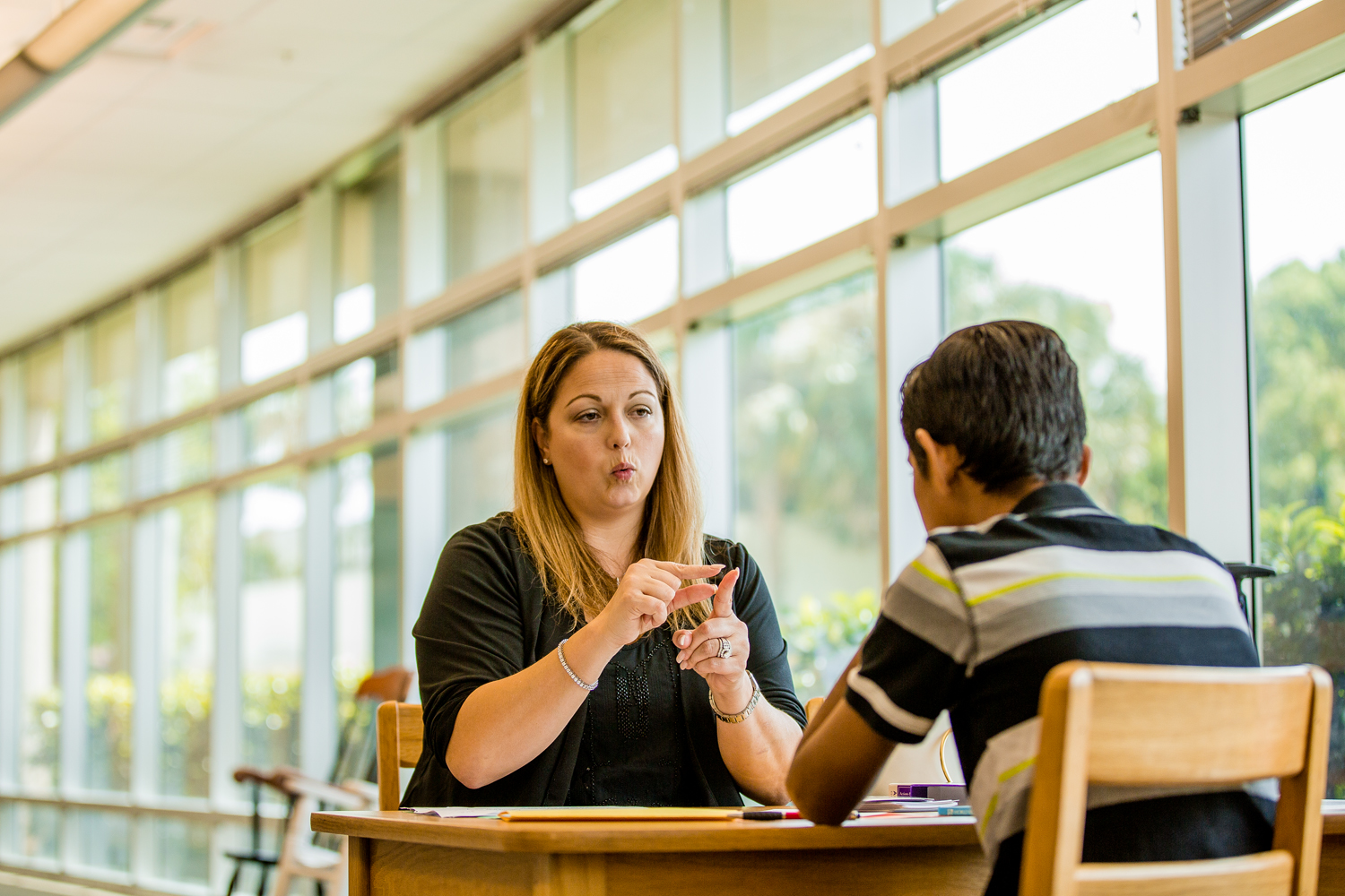 Private 1 on 1 tutoring - English is one of the most complex languages. We offer specialized tutoring, concentrating in the breakdown of English syntax, for the Deaf and Hard of hearing.For more information please call, text, or email.