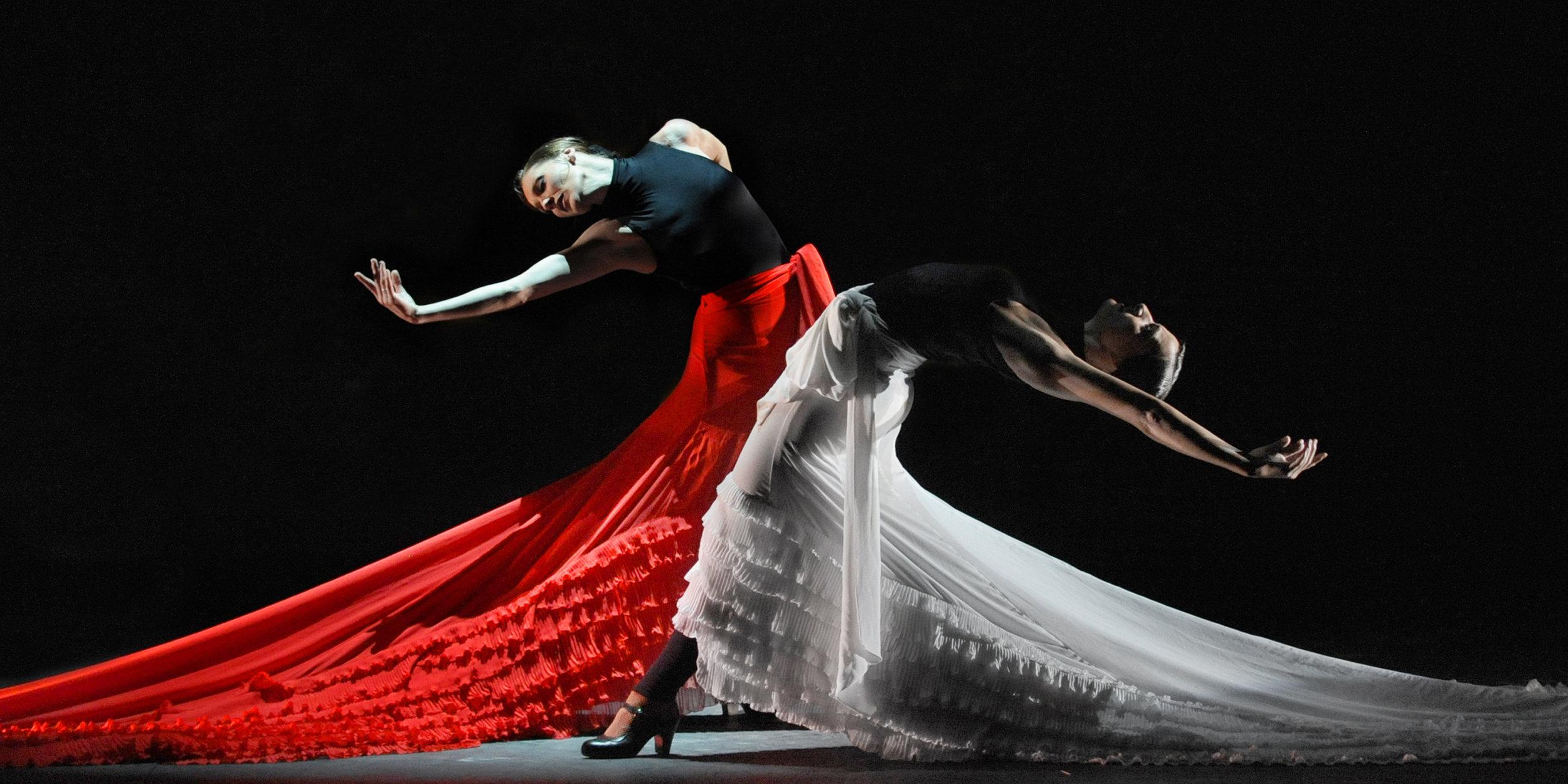 Flamenco  - SPANISH TRADITION.jpg