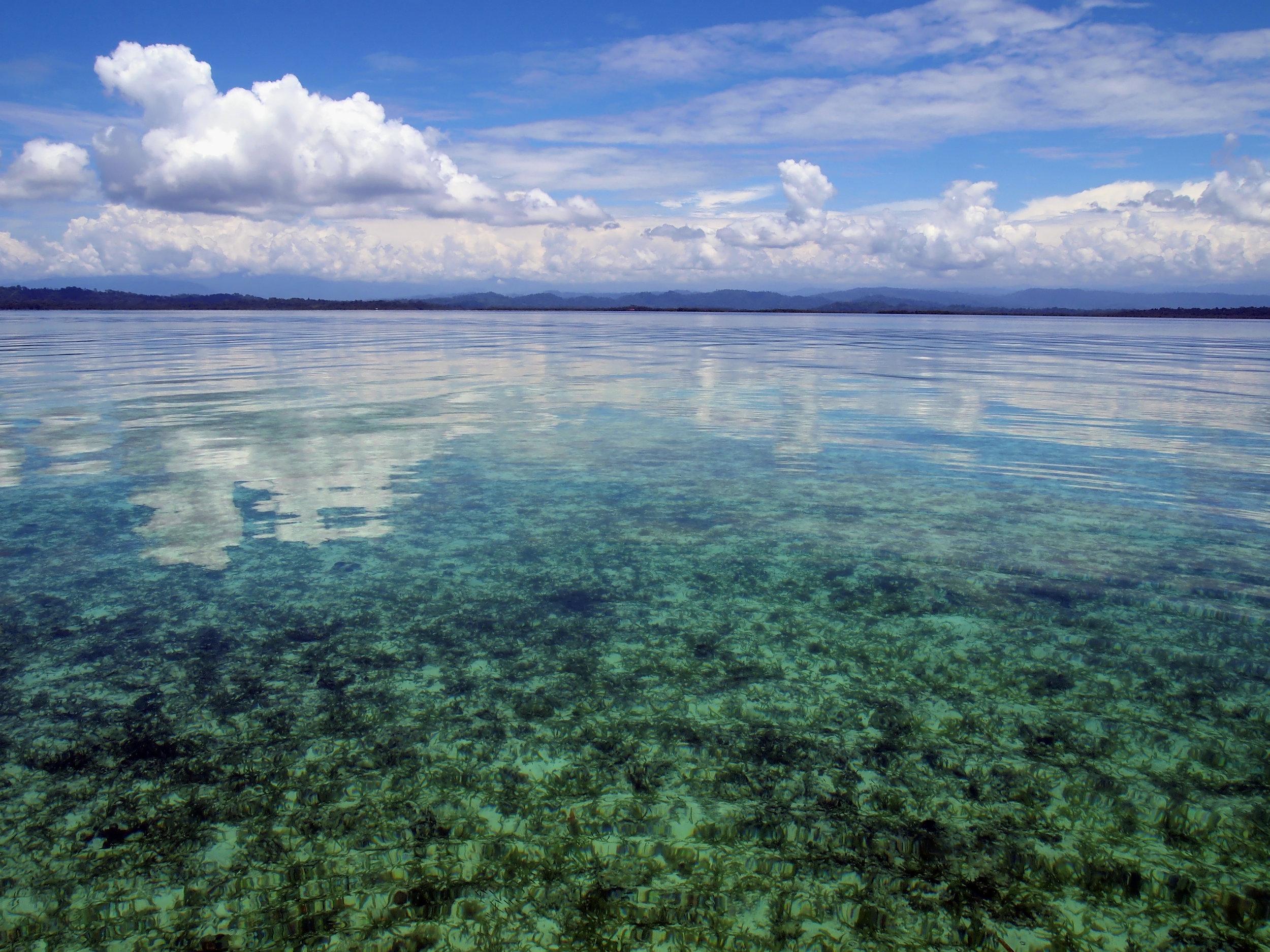 Bocas del Toro Panama.jpg
