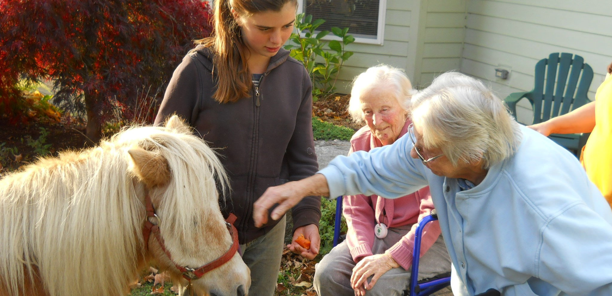large residents with pony.jpg
