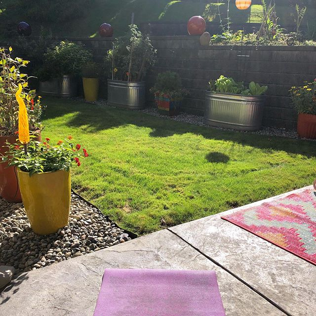 Yoga outside in the sunshine in my parents' garden = bliss 🧘🏼‍♀️ 🌞 🌱 . . . #yogatime #yogainthegarden #happyplace #yogaoutdoors #bestyogaspot #sunshine #sunnyfallday #thingsthatmakemehappy #dailyyoga #gardentime #myparentshouseisthebest #healingpractices