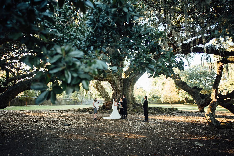 Lisa + Rock-Tree-of-Life-Audubon-Park-New-Orleans-Elopement-Photos_Online_0087.jpg