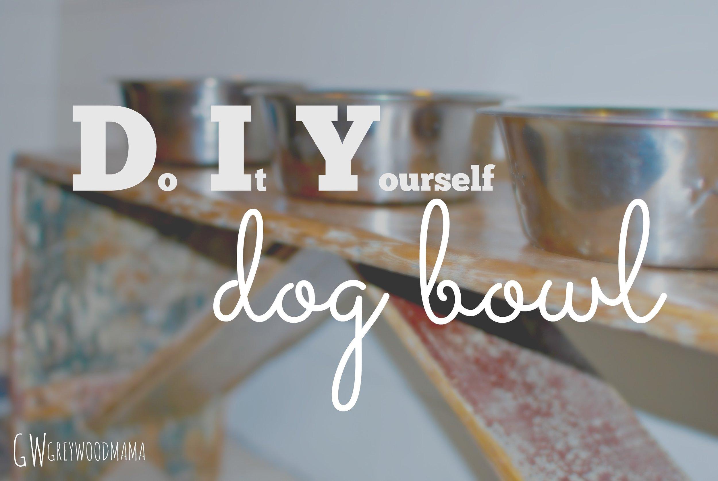 dog-bowl-pinterest.jpg