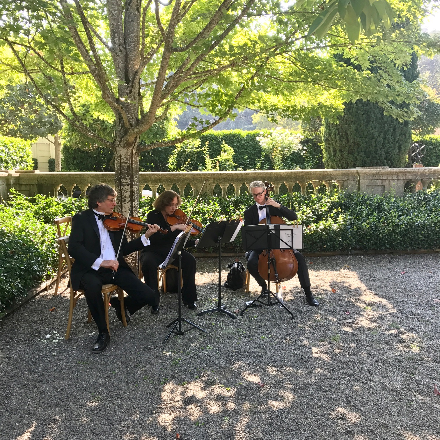 The string quartet played a marvelous mix of elegant sounds before & after the ceremony.