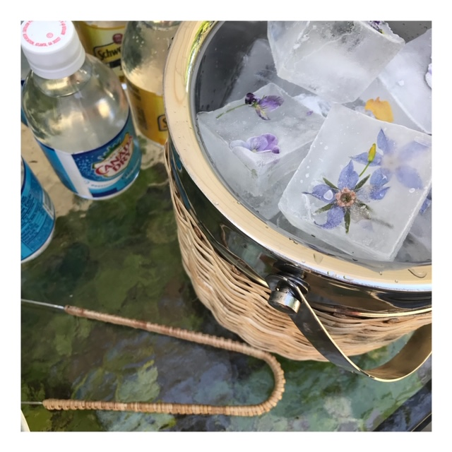 Nasturtiums frozen for summer cocktails! A little snippet from a garden party last season…