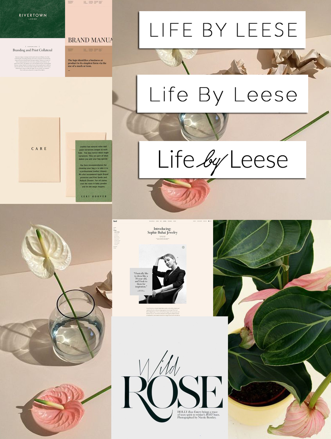 Mood board , logo concepts for Life by leese