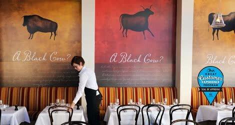 Black Cow(1).jpg