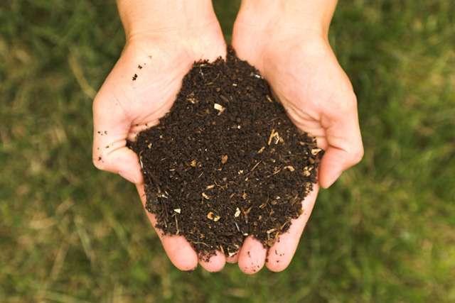 Soil Sample Dirt.jpg