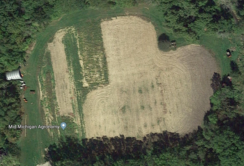 This is our location right behind our barn in Dewitt, Michigan. We use this site for our Late Blight trials.