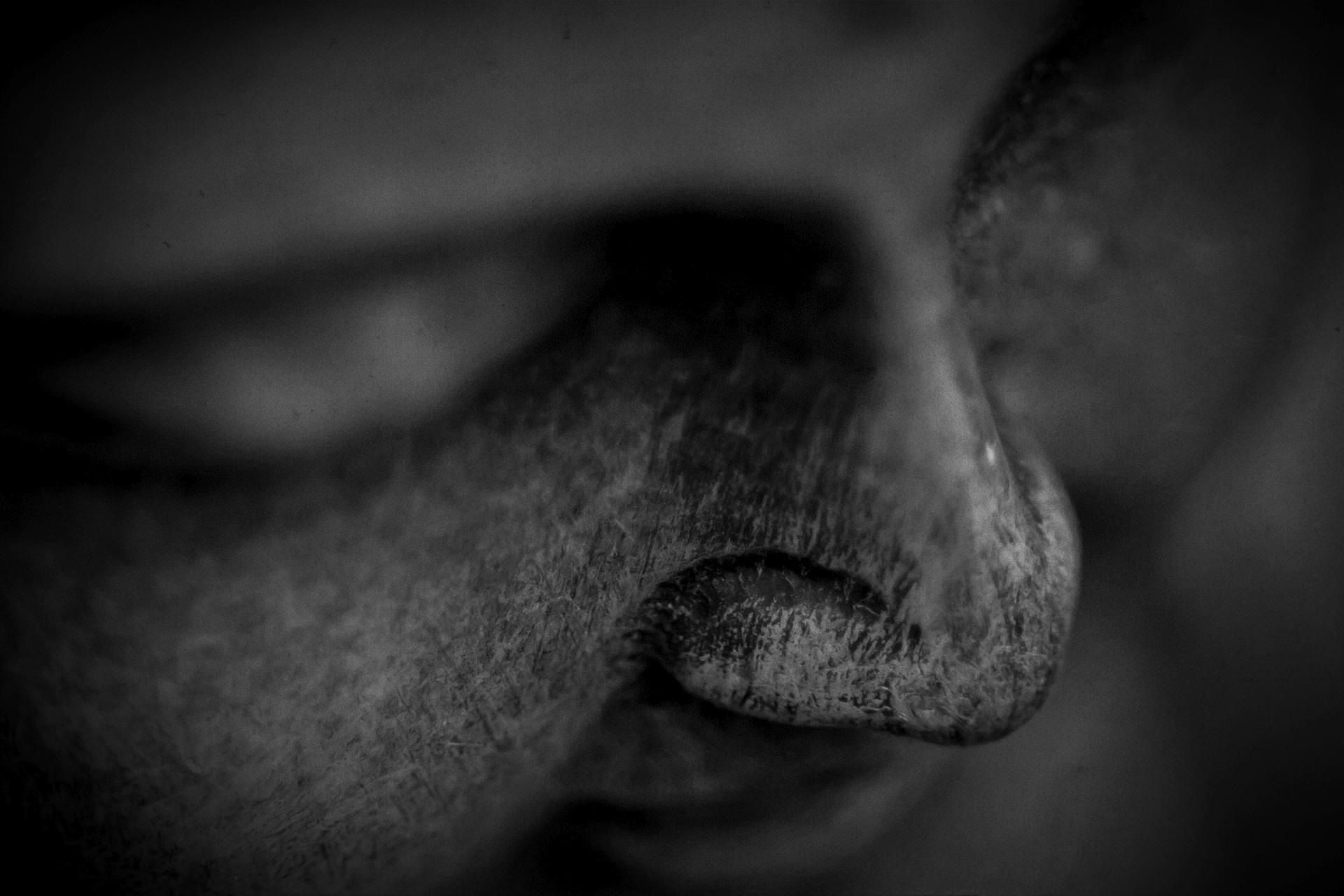 buddha-1279550_1920.jpg