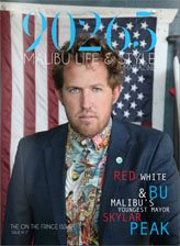 90265: Issue 7