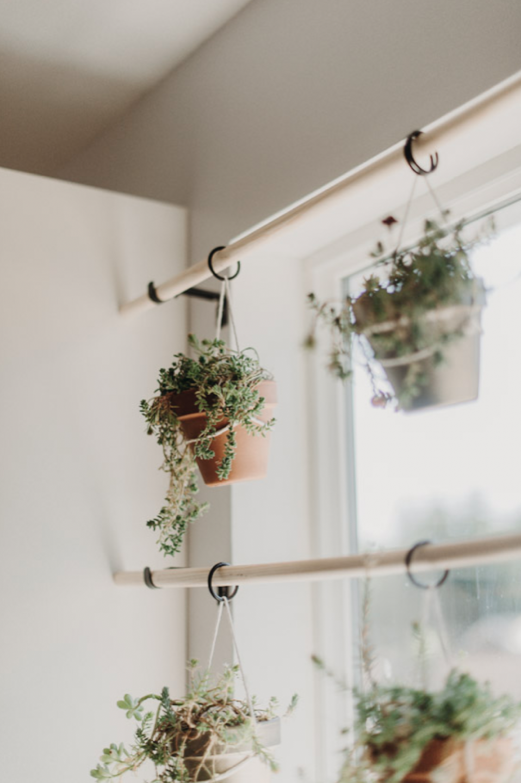 Diy Window Plant Hanger Brooke Summers Photography