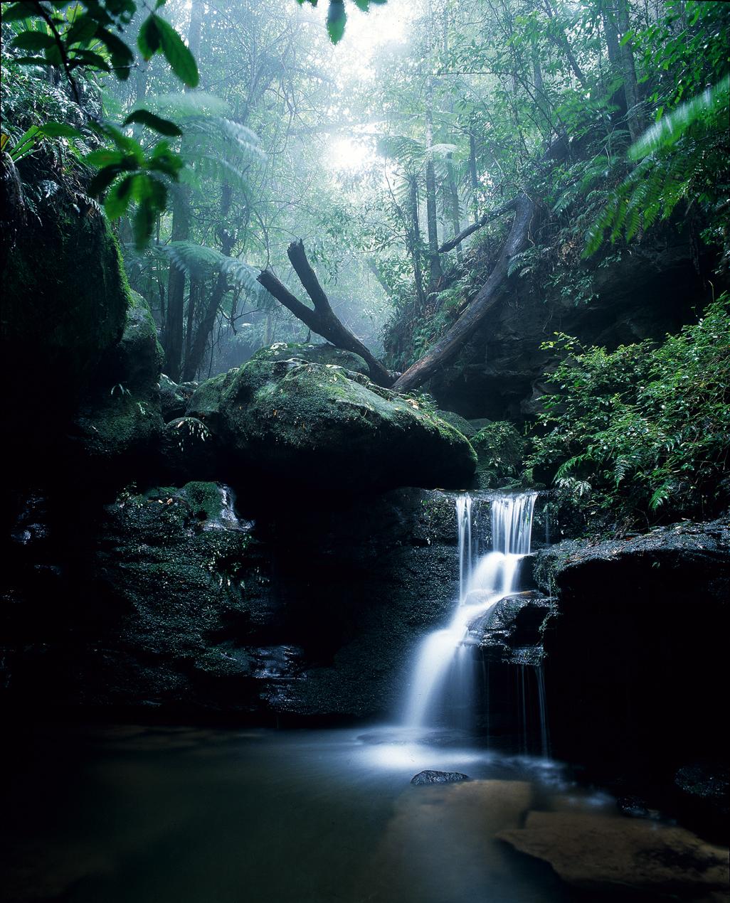 Watagan Mountains - hi res .JPG