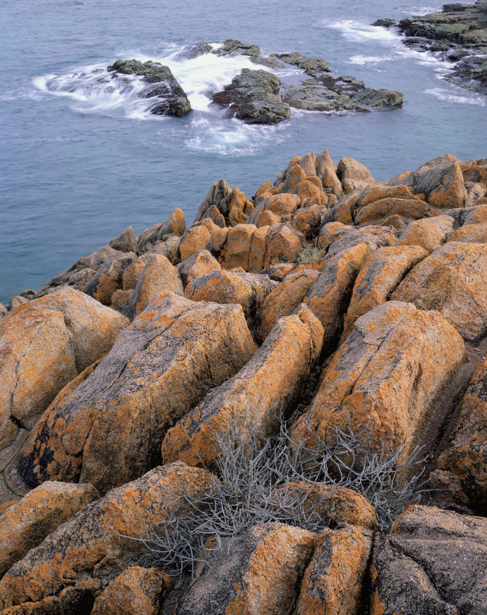 Tomaree red rocks n waves.jpg
