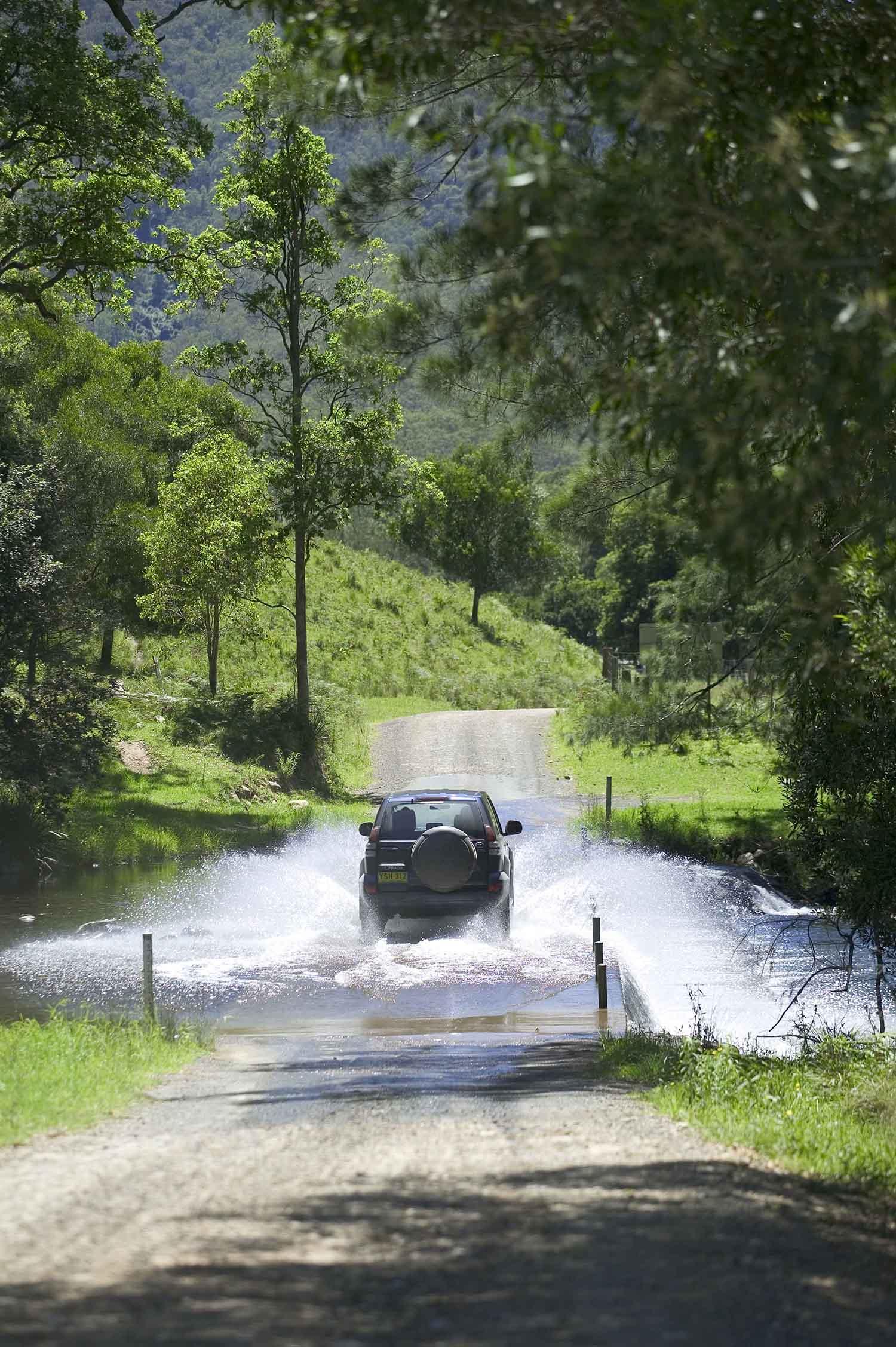 TNSW Nature 2 330.jpg