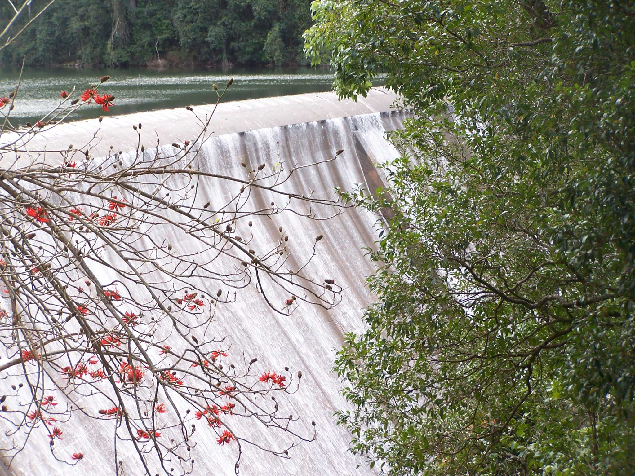 Glenbawn-Dam-spillway3,-UHSC.jpg