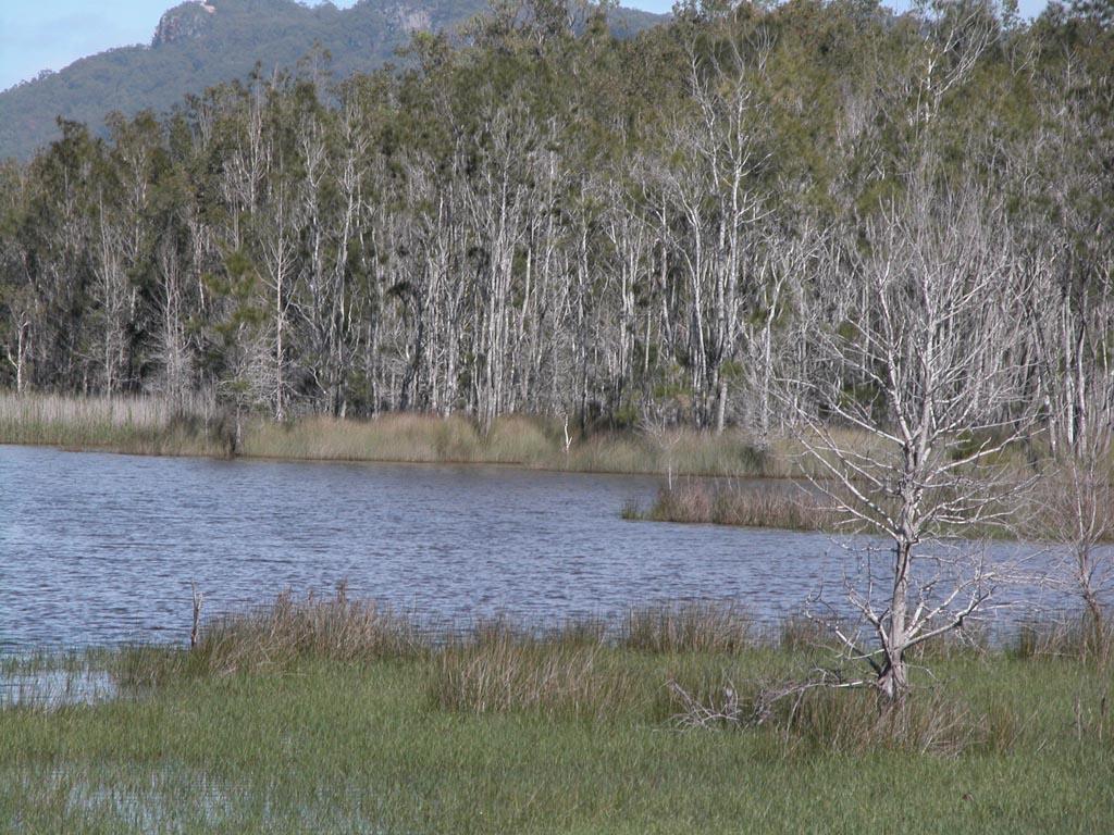 Lake Cathie007.JPG