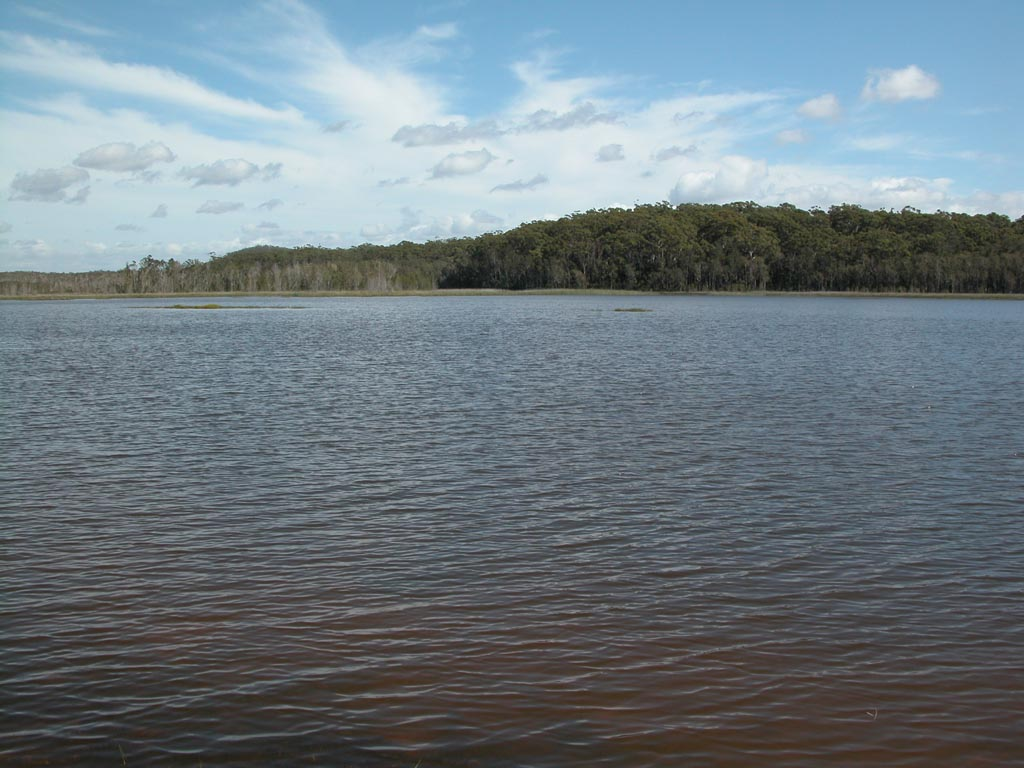Lake Cathie015.JPG