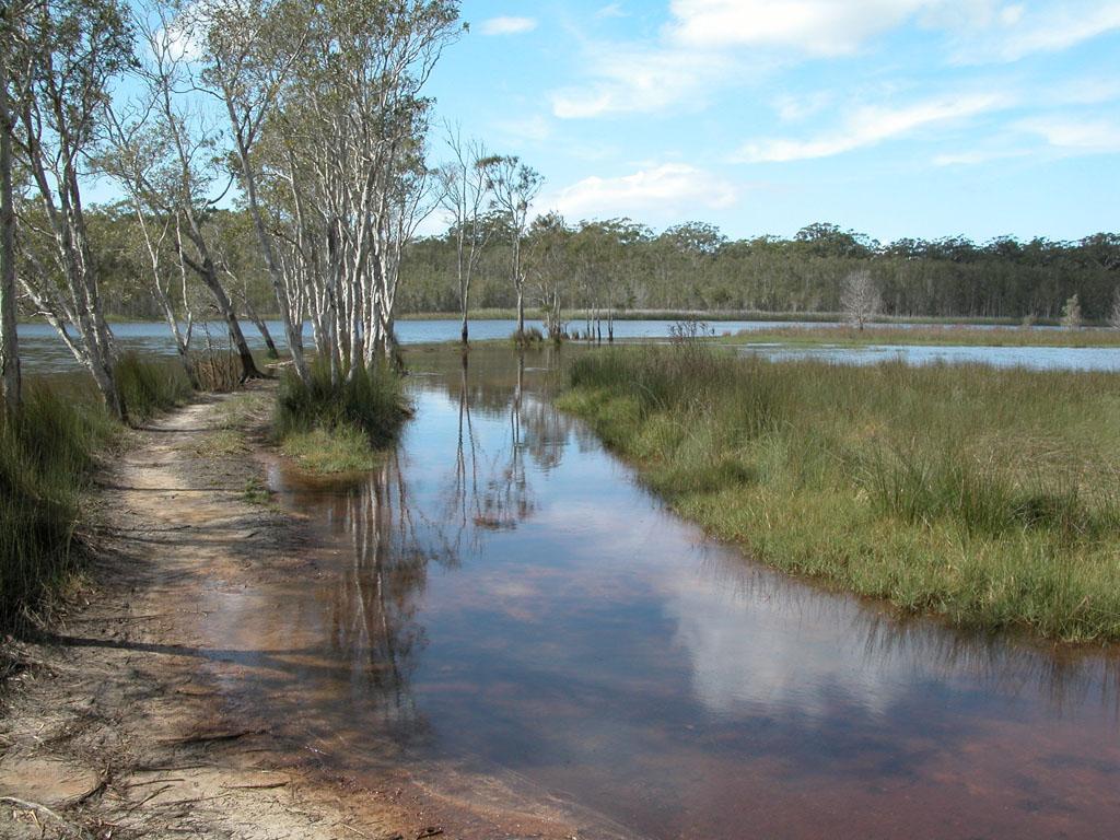 Lake Cathie017.jpg