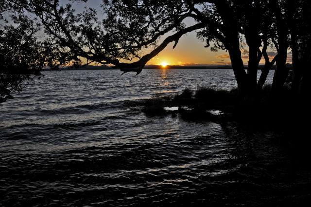 Myall Lakes K McGrath ©DECC (55).jpg