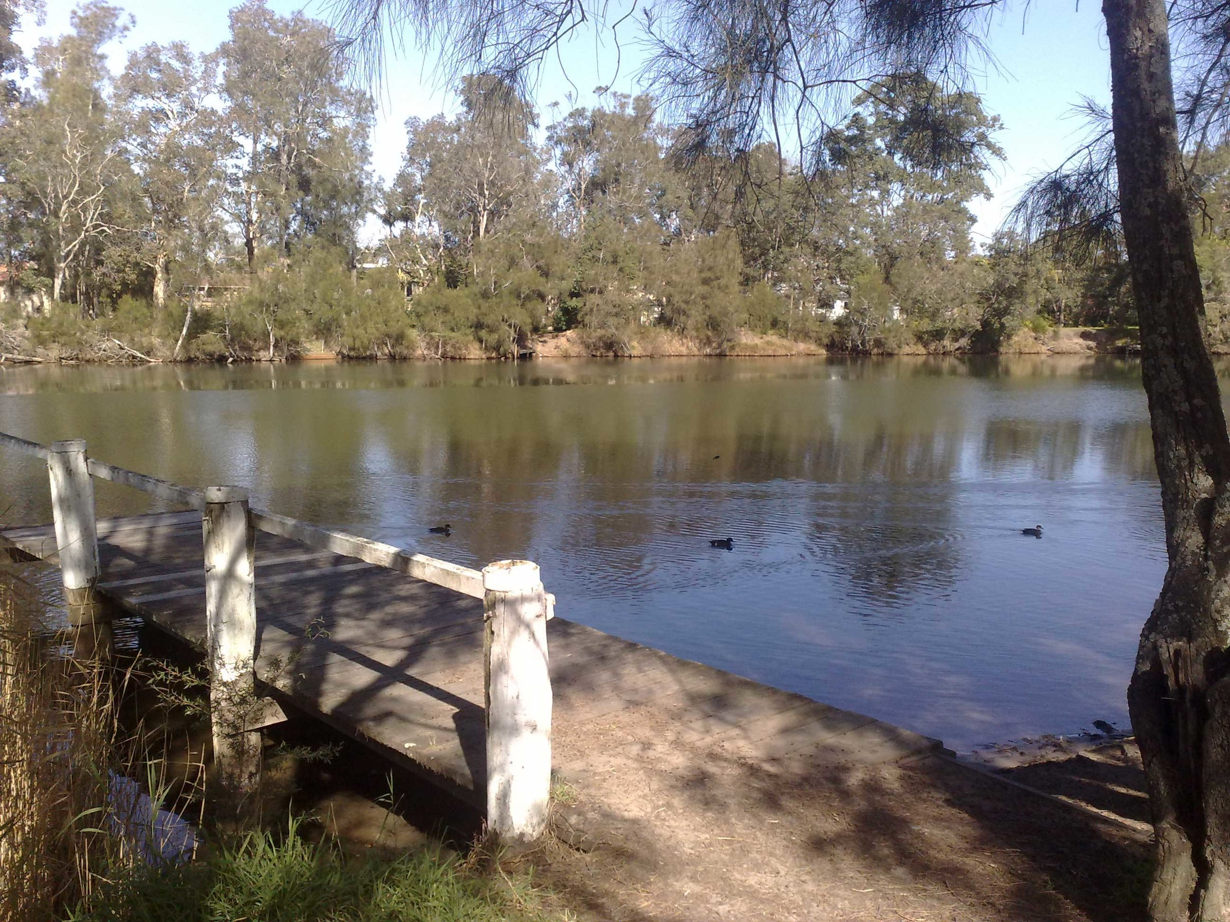Ourimbah-Creek,-Cht-Point.jpg