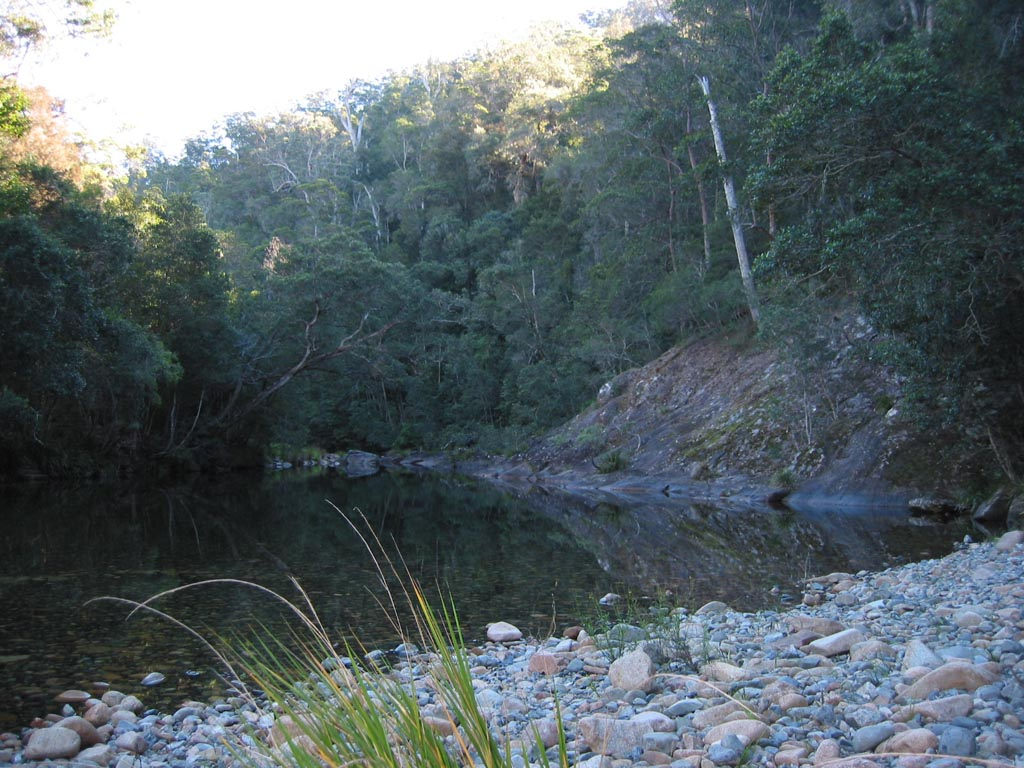Wilson River Primitive Area017.JPG