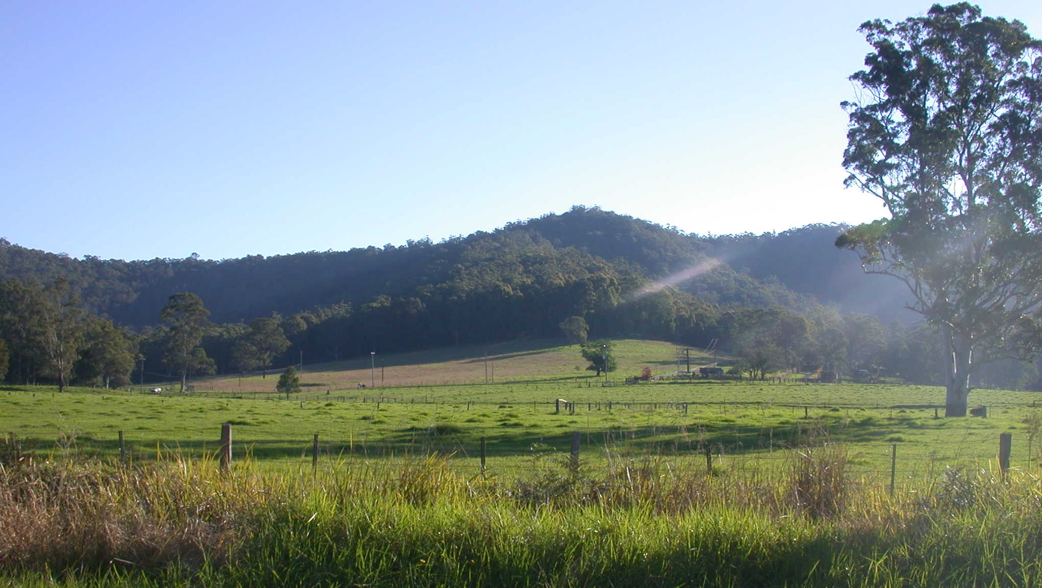 Yarramalong Valley 3.JPG