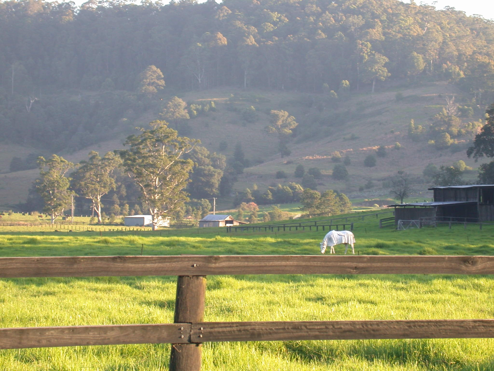 Yarramalong Valley 4.JPG