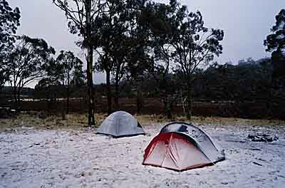 Polblue Camping Area, NPWS 10051.jpg