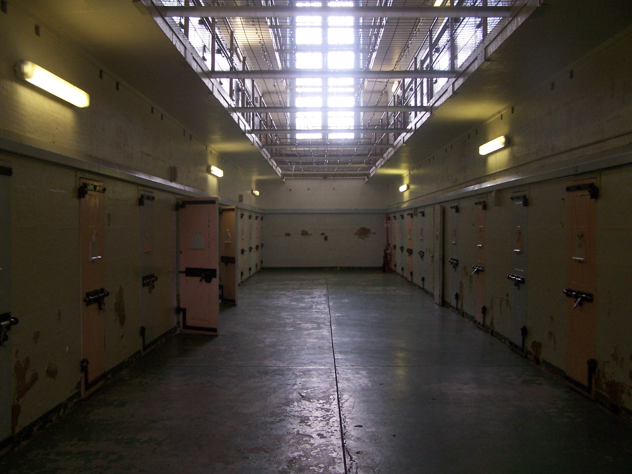 Lower cells, MG 08001.JPG