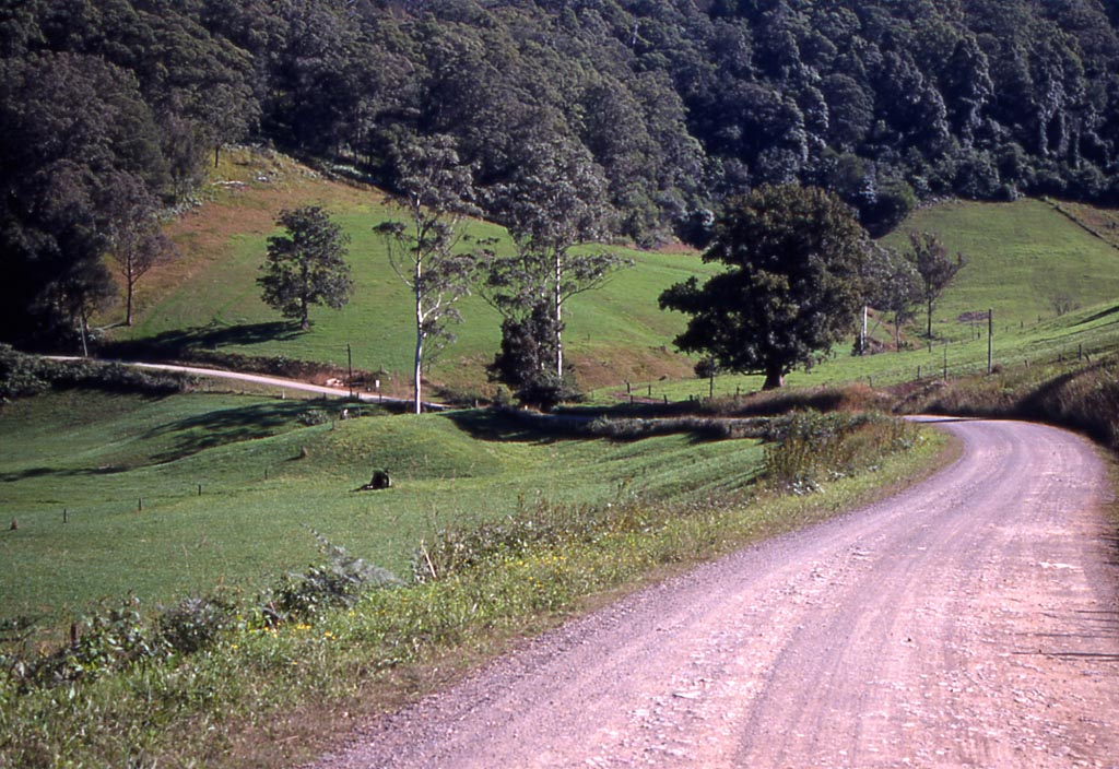 Black Creek Road.jpg