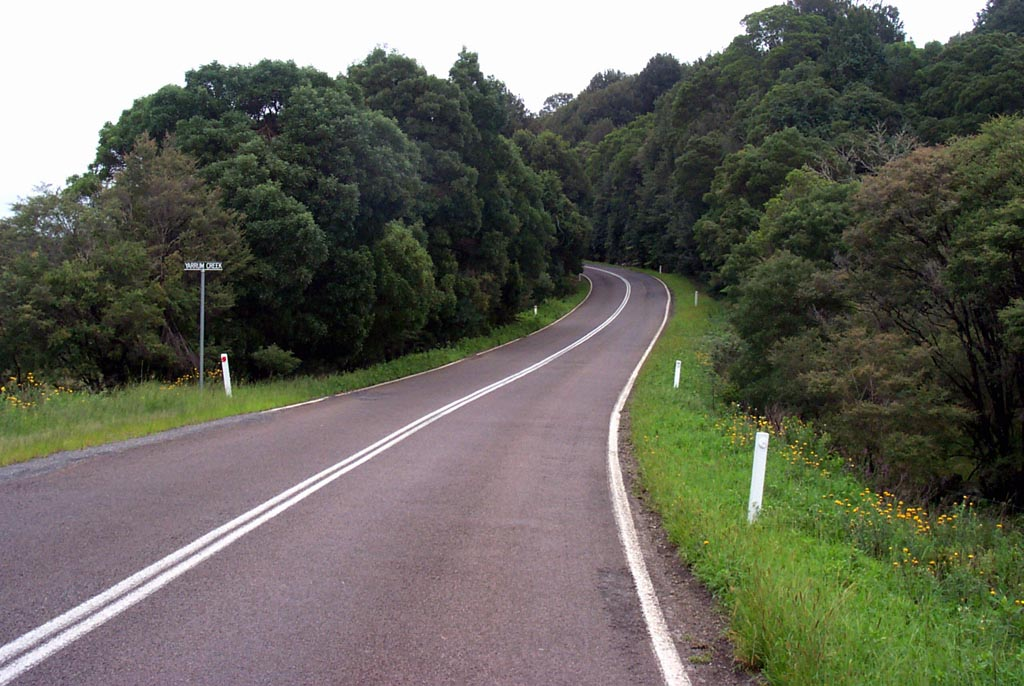 Waterfall Way Dorrigo.jpg