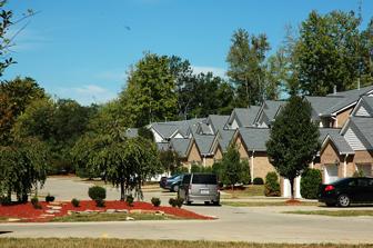 View of the Neighborhood