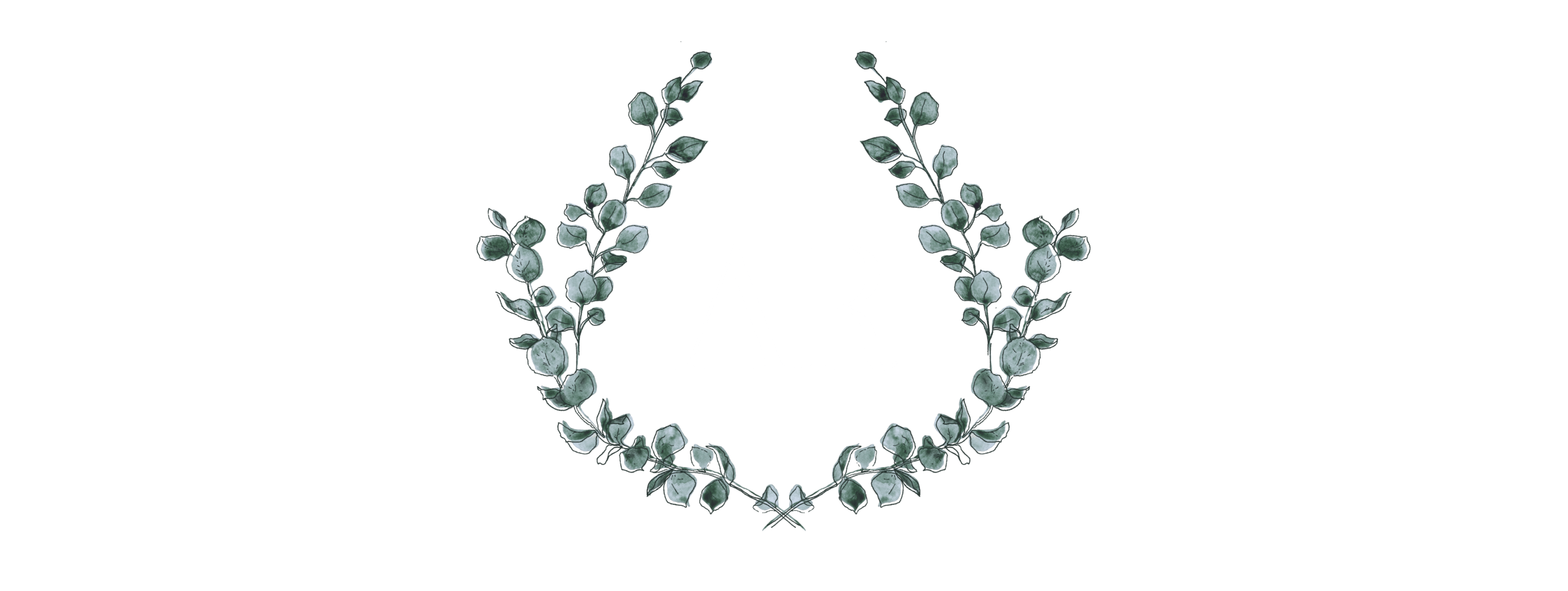 Allison Redmon Photography & Films Alternate Logo in White.png
