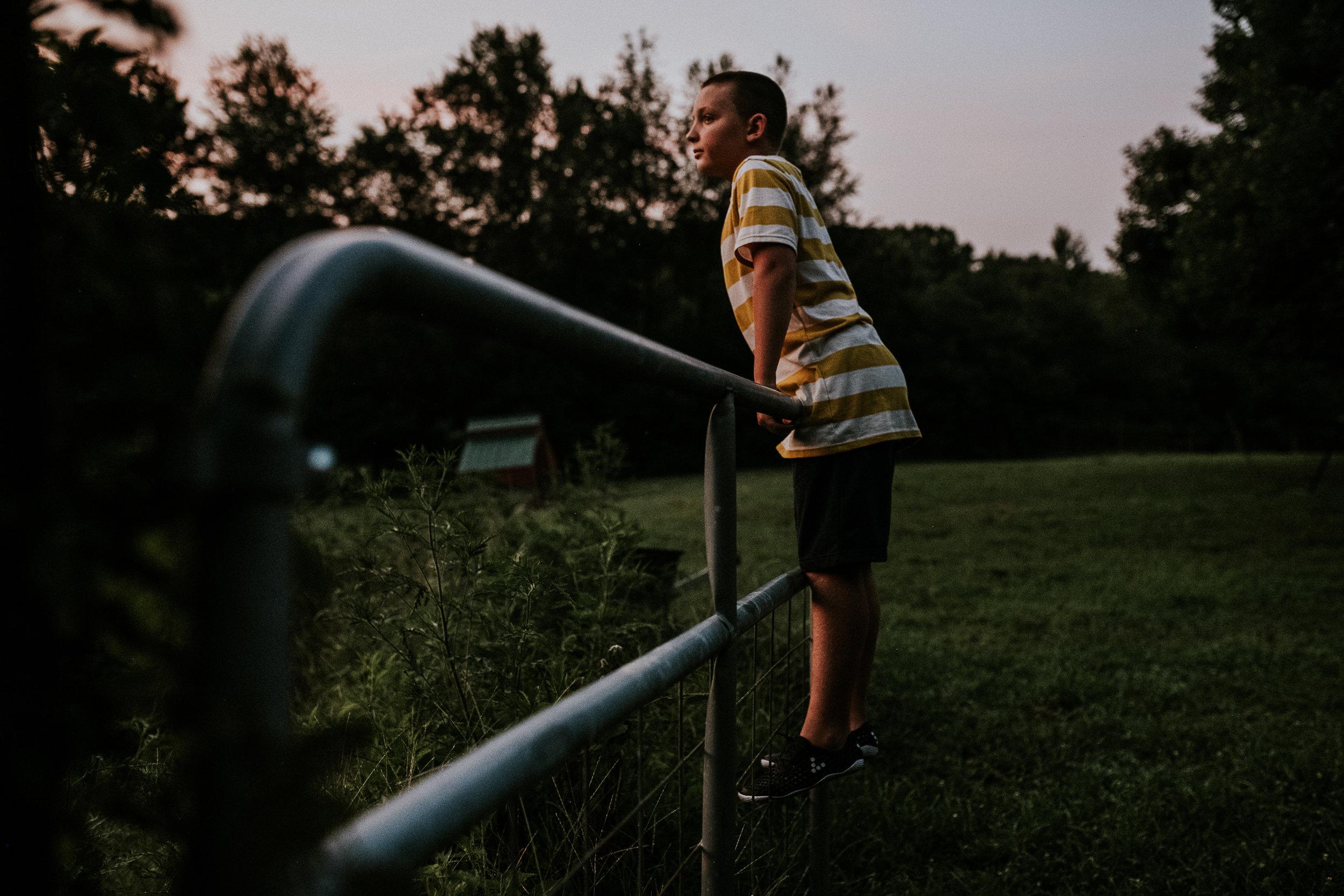 Atticus at sunset