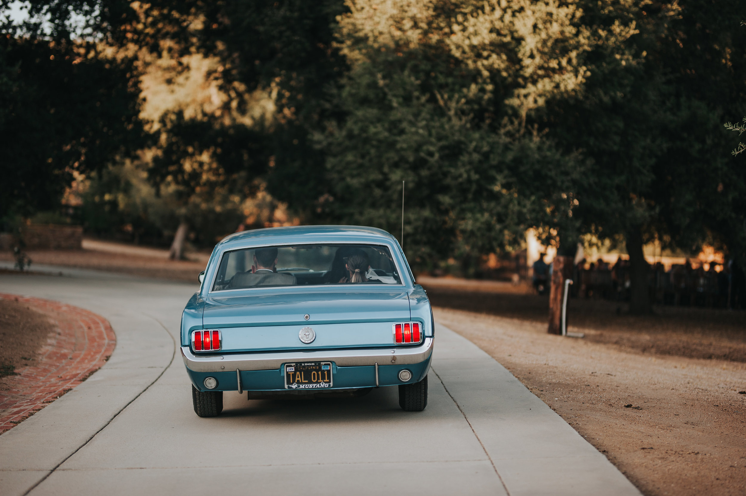 Back view of a 1966 Ford Mustang in Murrieta.