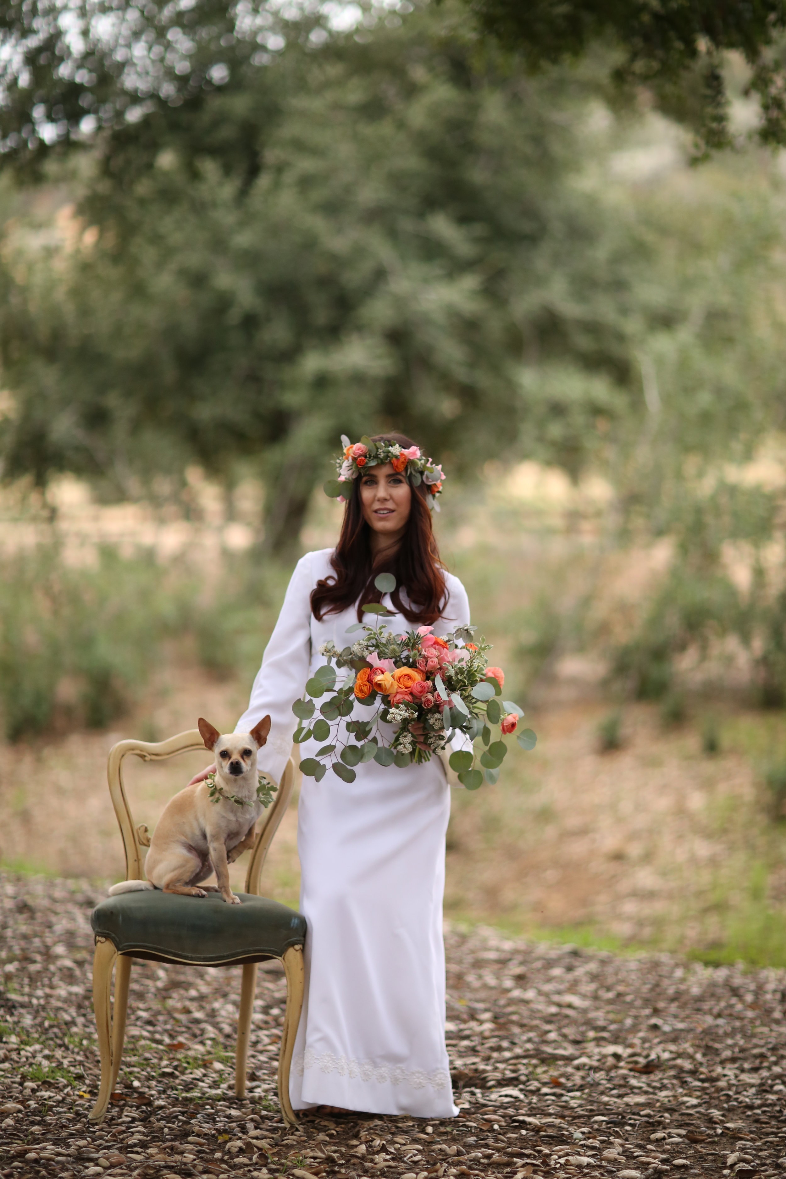 Mother Nature bride and her dog. French velvet chair available to rent from Birdie in a Barn in the Temecula Valley.