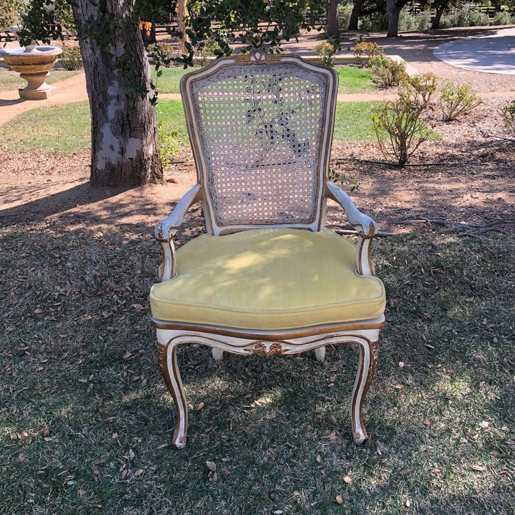 """Antonio  Beautiful French Provincial chair with caned back, gold leafing, and gold velvet seat. 40"""" tall x 24"""" wide x 18"""" deep Great choice for a sweetheart table."""