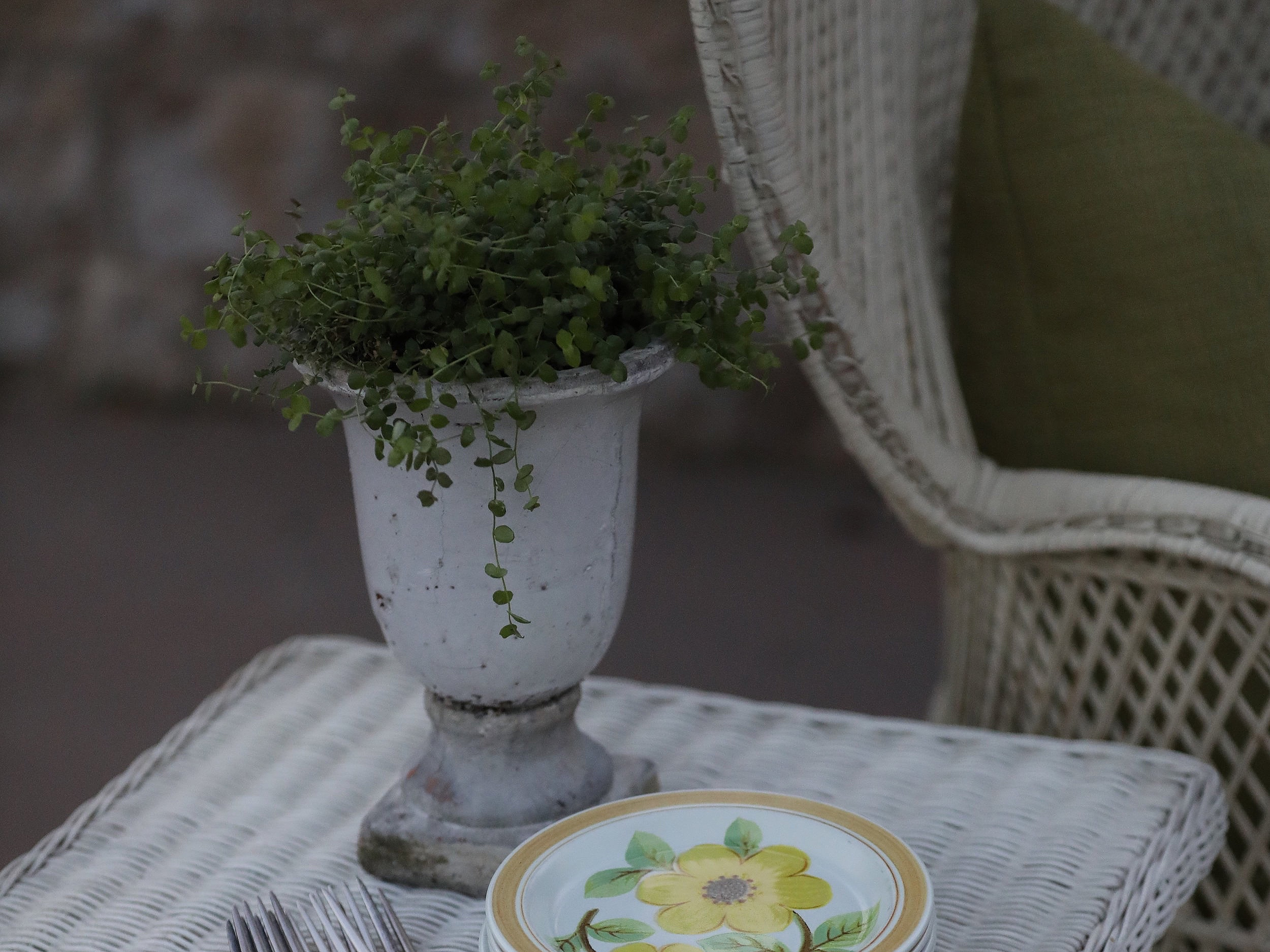 Green Plant Urn