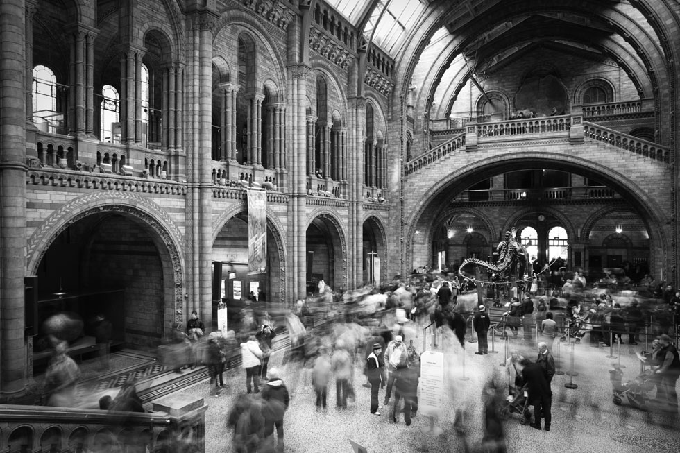 Museum of Natural History, London