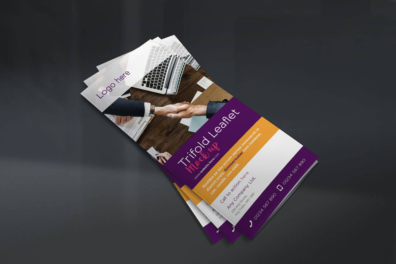 Trifold Leaflet - Concept 1 - Front