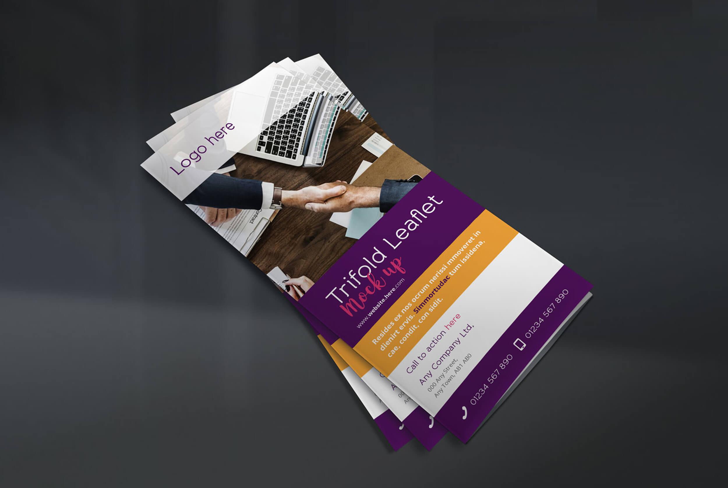 Trifold Leaflet Concepts