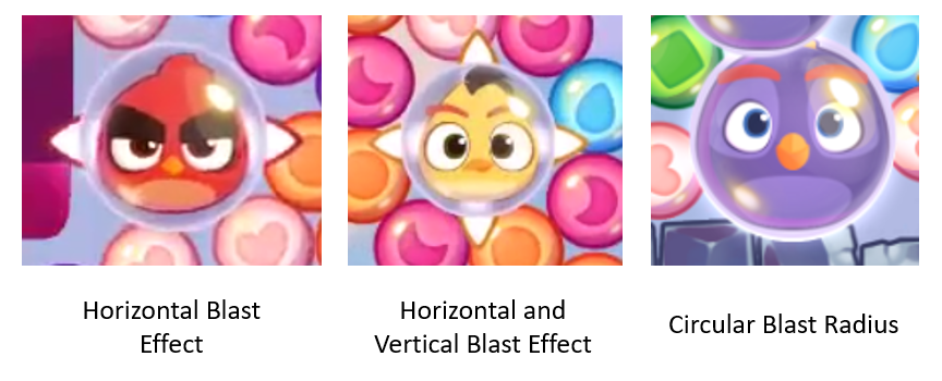 3 types of birds.png
